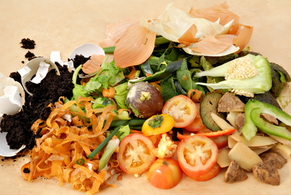 food scraps used for making compost