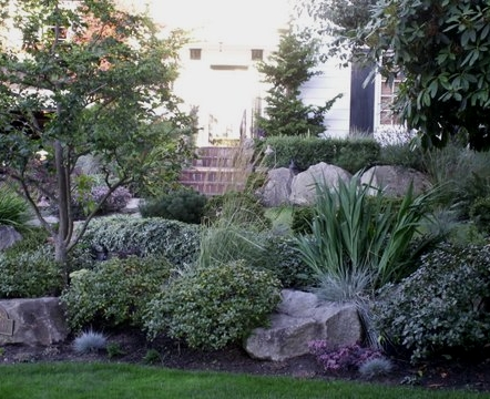 Maintenance-free garden design by Environmental Construction, Kirkland WA
