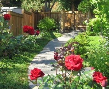 Rose garden design by Kirkland Landscape Company, Environmental Construction