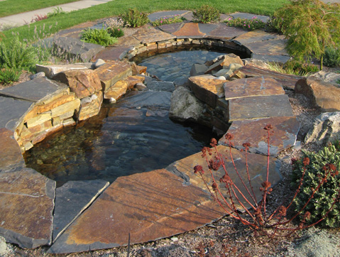 Pools and ponds designed by Environmental Construction Inc. in Kirkland WA