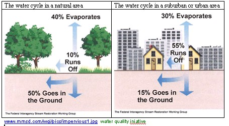 The water cycle in natural and in suburban/urban areas